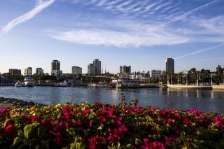 La marina de Long Beach accueille le plateau de la Formule E ce week-end